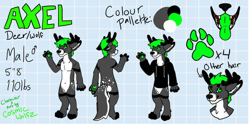 Axel's Reference Sheet by Cosmic-wolfz