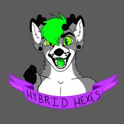 Hybrid hexes logo by Cosmic-wolfz