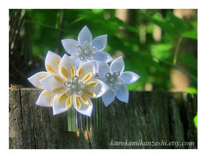 Sunny Clematis - SOLD