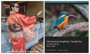 Birds of Paradise - King Fisher