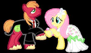 Pony Wedding Commission: Big Mac X Fluttershy by Mokrosuhibrijac