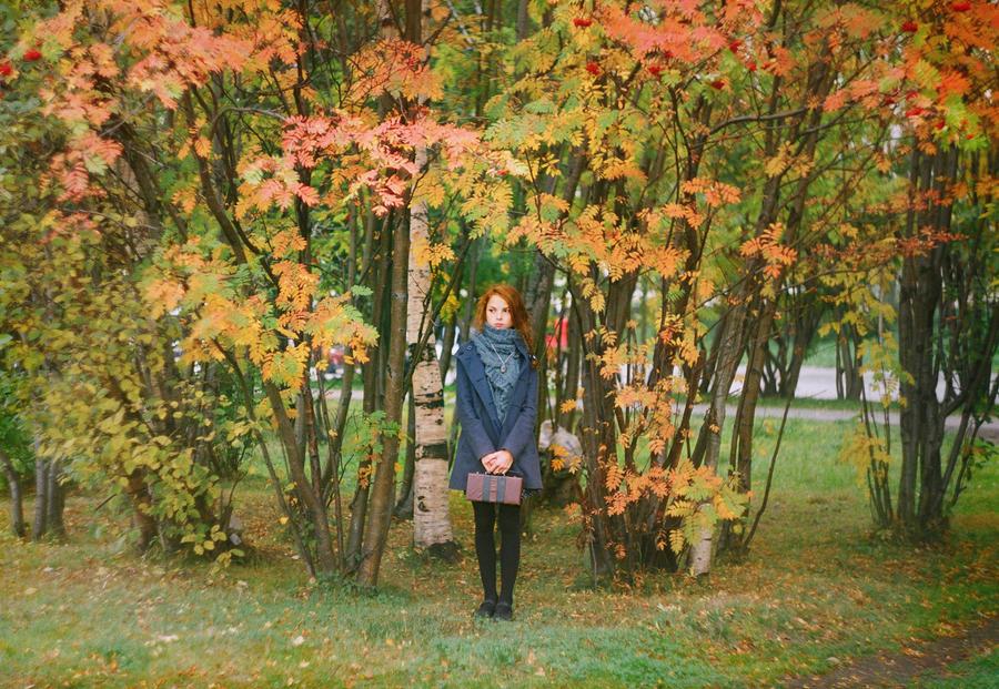 autumn mood by natsdesu
