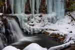 Cayuga Blue Ice