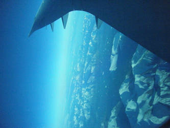 Plane Ride by xxRomanoForeverxx