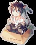 yato(cat)