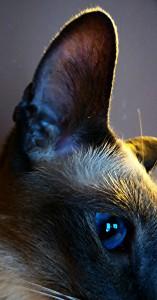 marjorie1206's Profile Picture