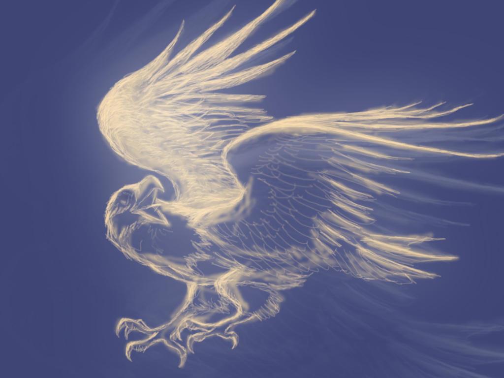 Eagle Wings Drawings Eagle Wings Drawing