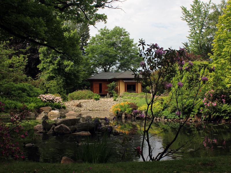 Japanese Garden by no-purgatory