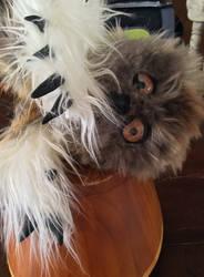 Art Doll Baby OwlBear by kkyak1