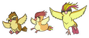 Pidgey, Pidgeotto, Pidgeot by HappyCrumble