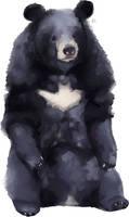 The Batman Bear