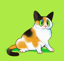 Calico Cat by HappyCrumble