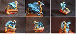 Book Dragon, The wizards pet.