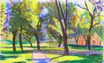 Park in Spisska