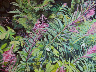 Willowherb in the Tatras WIP - Step 7