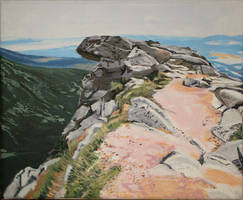 Eagle Rock WIP Step 3