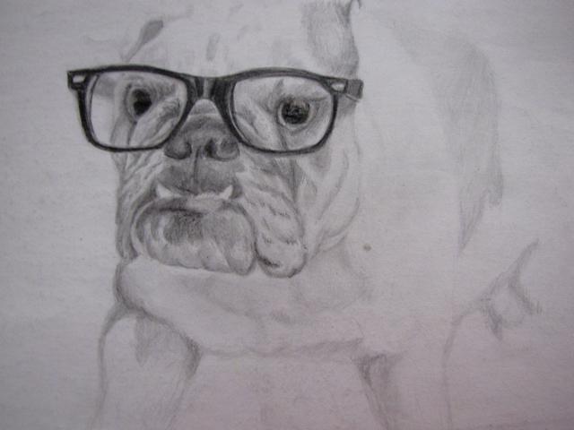 dibujo a lapiz de bulldog con lentes by lio014