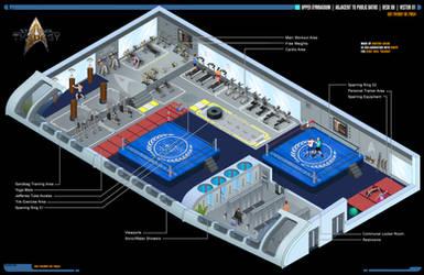 Upper Gymnasium | Star Trek: Theurgy