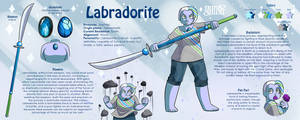 CMM: Labradotire reference Sheet