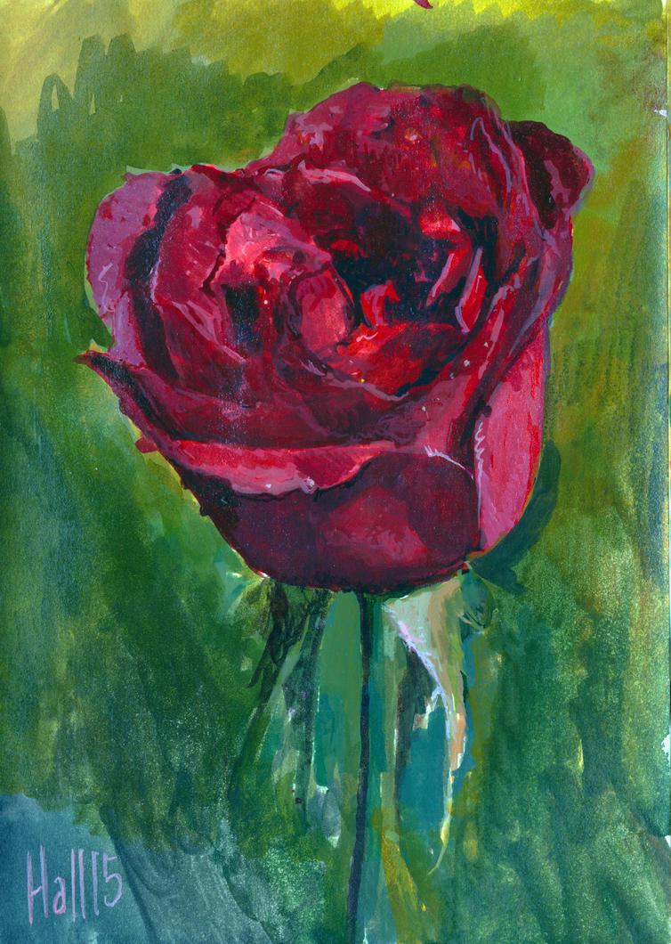 rose sketch by charles-hall