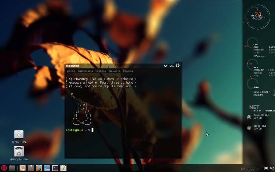 Mint Debian by votritis
