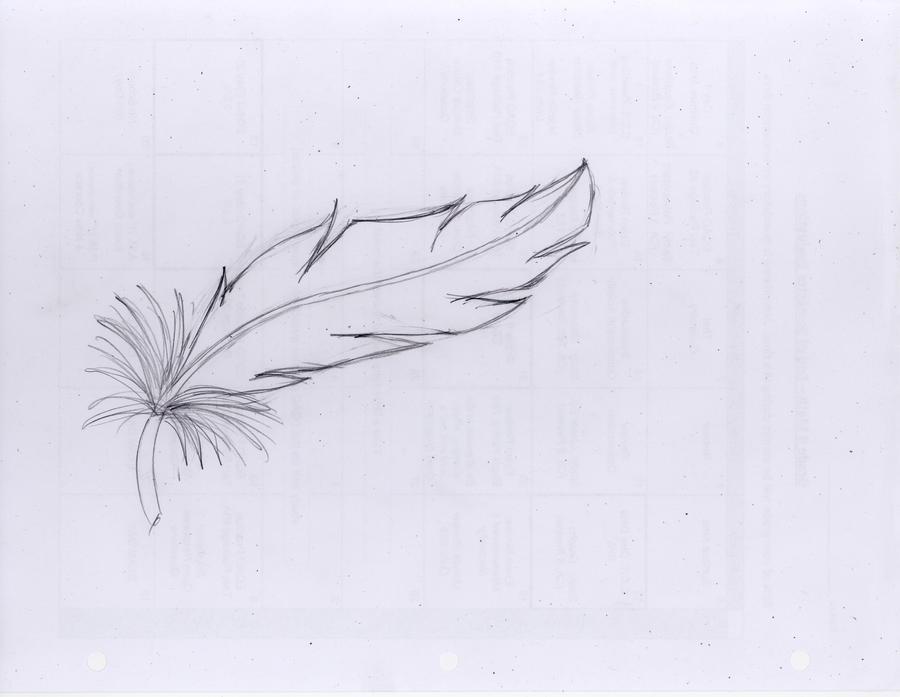 Feather: sketch by Despondentmuffin on DeviantArt