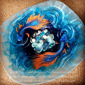 Japanese Fighting Fish Large Glass Shallow Plate