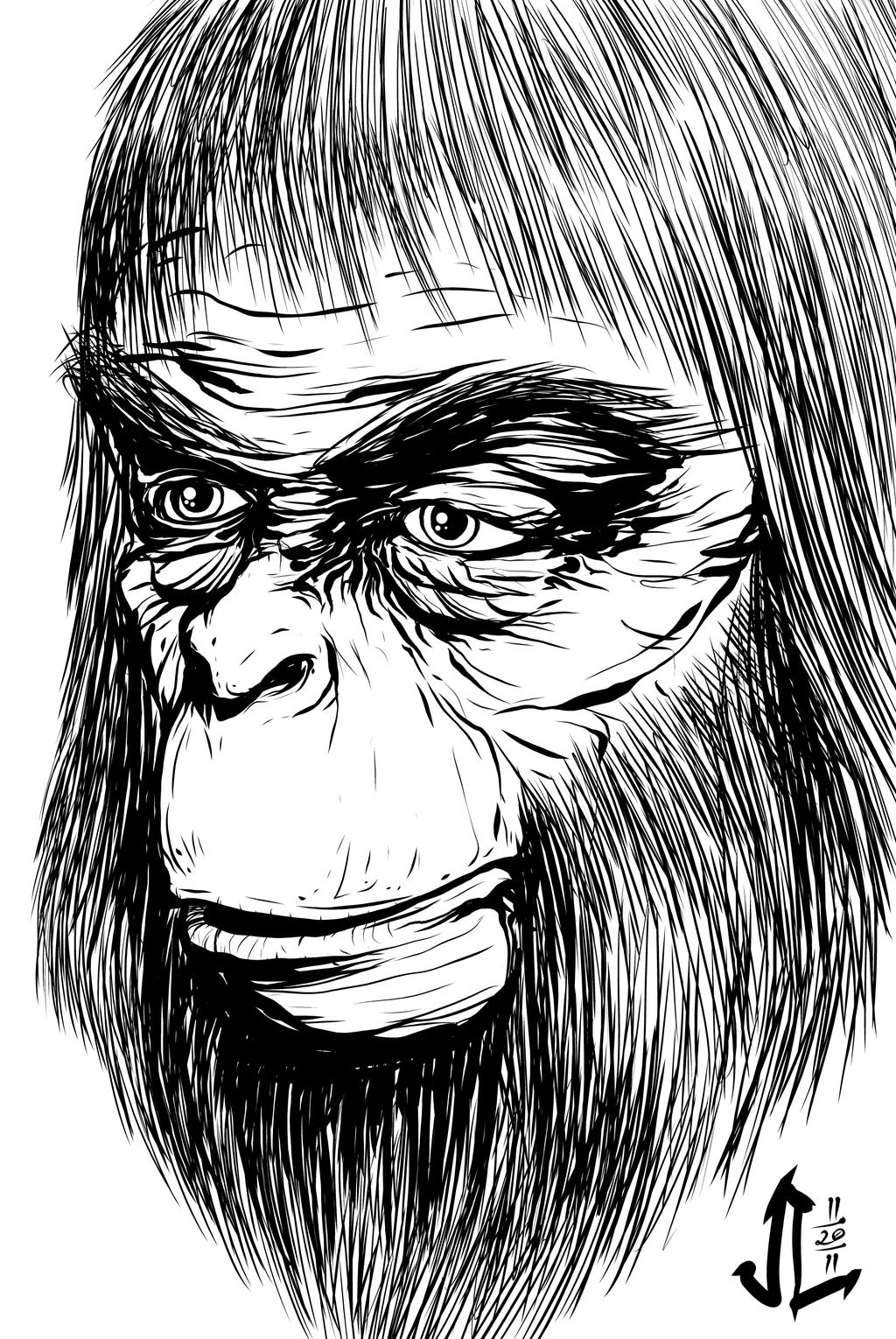 Dr Zaius - NOV '11 Sketch a Day 20 by JeremiahLambertArt
