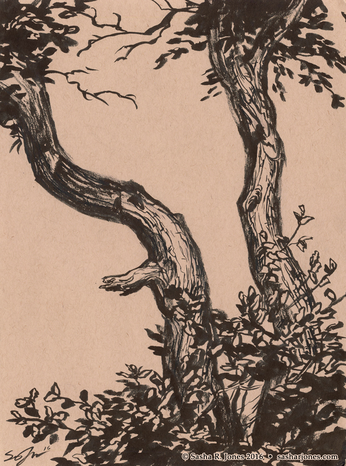 Inktober 2016 #7 - Twin Oaks by SashaRJones