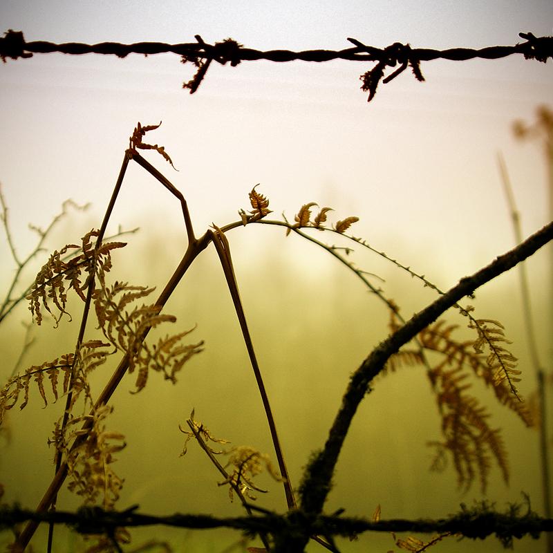 locked by MelekKoncuyKoruklu
