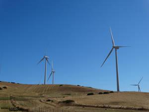 Day Windmills