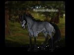 Marrok Madain | Buck | Glenmore Commoner