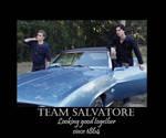 Vampire Diaries-Team Salvatore