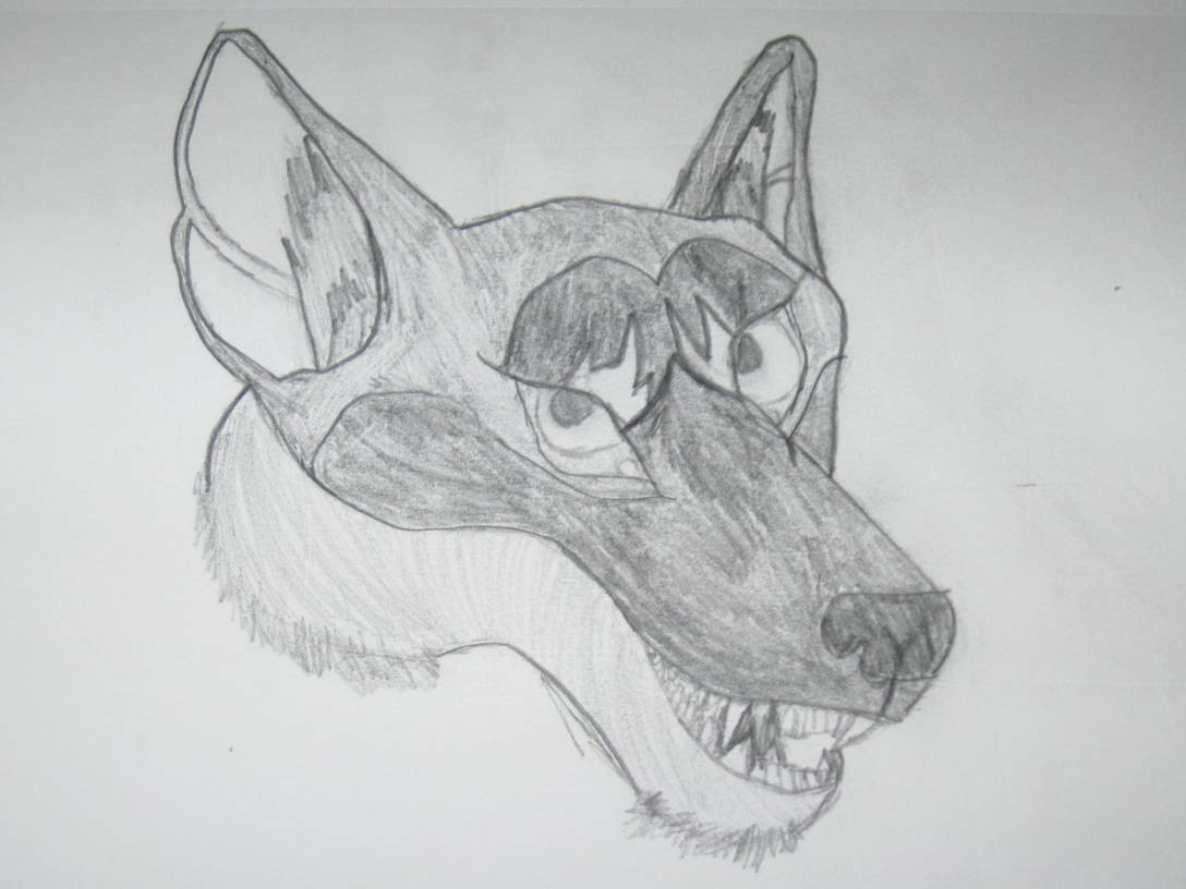 badly drawn wolf face by mruncivil badly drawn wolf face by mruncivil