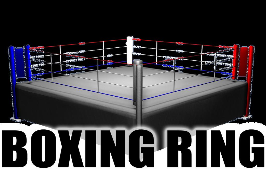 Boxing Ring for DAZ Studio by sedartonfokcaj on DeviantArt