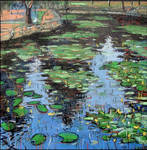 EVENING. POND. WATER LILIES