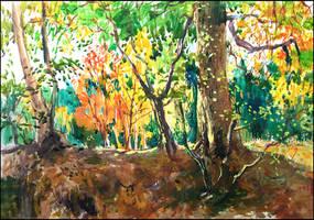 TREES ON THE KNOLL (EN-PLEIN-AIR SKETCH) by Badusev