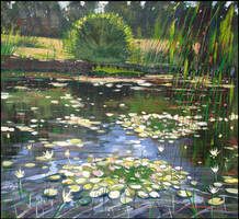 WATER-LILIES IN THE MIRROR OF THE POND