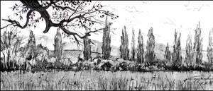 POPLARS IN TCHAIKOVSKOYE