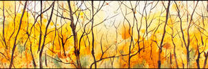 AUTUMN FOREST ABOVE THE ANGARA by Badusev