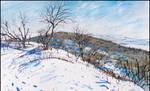 TREES IN SNOW ATOP BITAK KAYA (PLEIN-AIR SKETCH)
