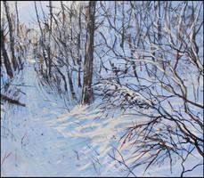 STROLLING IN THE WOODS IN WINTER by Badusev