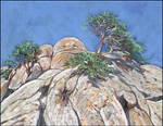 PINE TREES ON THE ROCKS OF DEMIRDZHI-YAYLA by Badusev