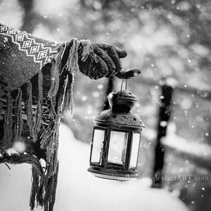 Light of the winter