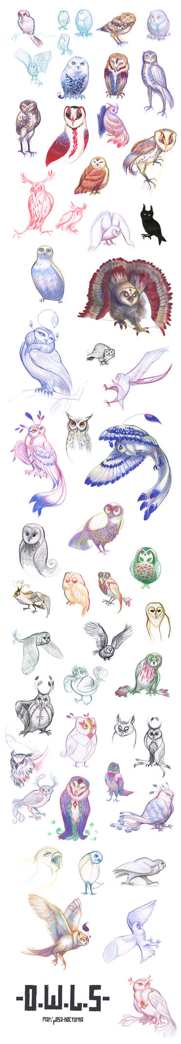 tumblr sketchdump : owl design by mariposa-nocturna