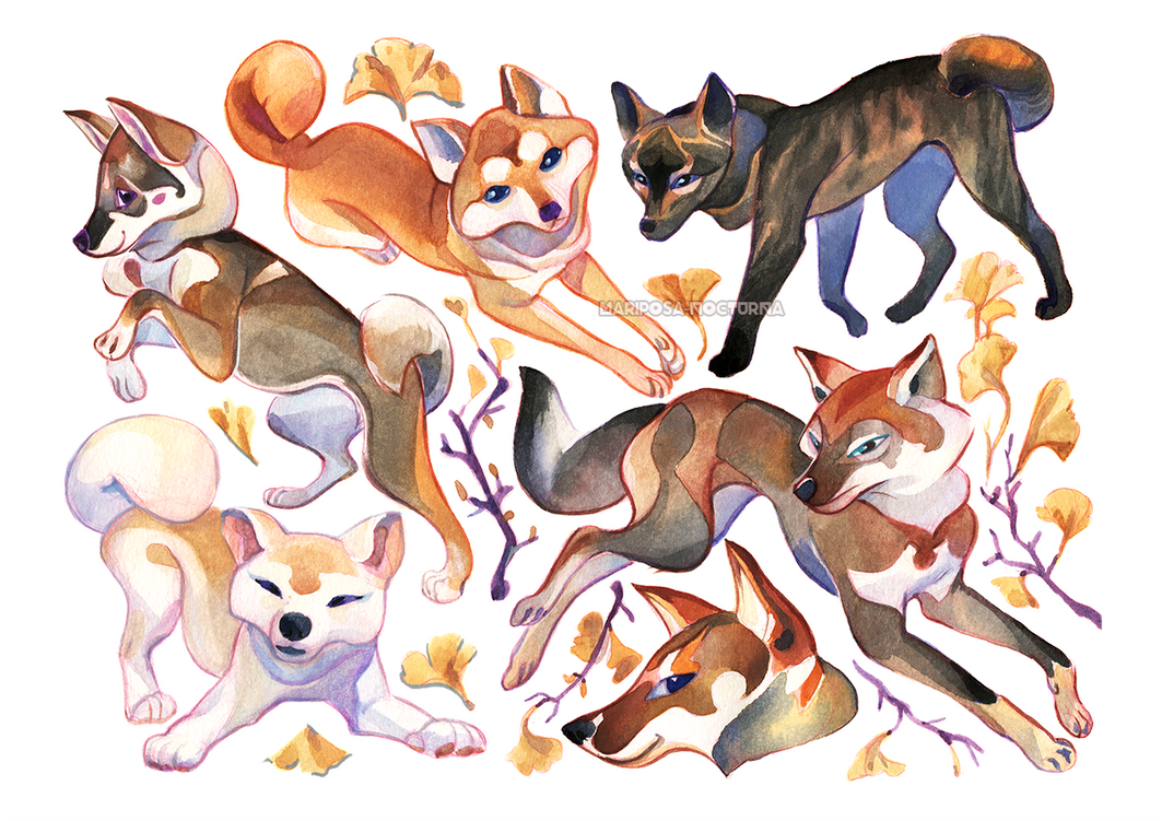 Japanese dogs by mariposa-nocturna