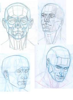 Head Study 4