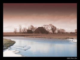 Brown winter by PeterZen