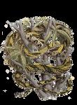 Snake 1 PNG