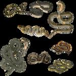 Snake 4 PNG
